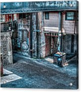 Savannah Alley Acrylic Print