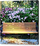Savannah Bench Acrylic Print by Carol Groenen
