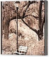 Savannah Bench Sepia Acrylic Print by Carol Groenen