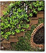 Savannah Details Acrylic Print