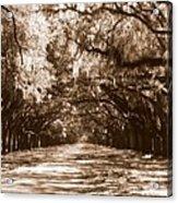 Savannah Sepia - The Old South Acrylic Print