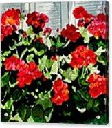 Savannah Window Box Acrylic Print