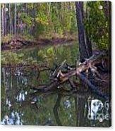 Save The Marsh Acrylic Print