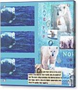 Save The Polar Bear Now Or Never Acrylic Print