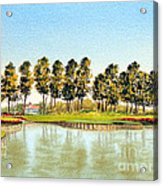 Sawgrass Tpc Golf Course 17th Hole Acrylic Print