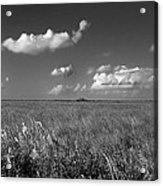 Sawgrass Prairie  Acrylic Print by Andres LaBrada