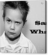 Say What Acrylic Print by Stephanie Grooms