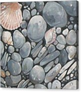 Scallop Shell And Black Stones Acrylic Print