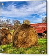 Scarecrow's Dream Acrylic Print by Debra and Dave Vanderlaan