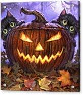 Scaredy Cats Acrylic Print by Jeff Haynie