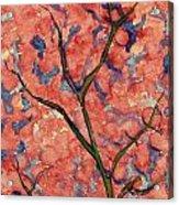 Scarlet Flowers Acrylic Print