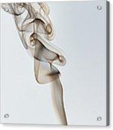Scatter Brain Acrylic Print
