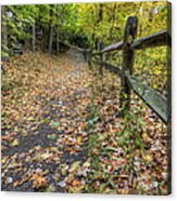 Scene In Mill Creek Park  Acrylic Print