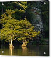 Scenic Beavers Bend Acrylic Print