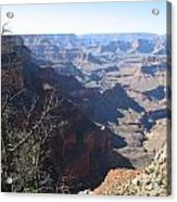 Scenic Grand Canyon Acrylic Print
