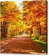 Scenic Tour Acrylic Print