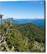 Scenic Urewera Np With Lake Waikaremoana In Nz Acrylic Print