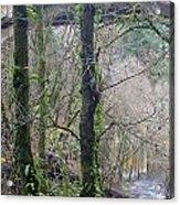 Scenic View Arch Bridge Acrylic Print