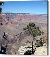 Scenic View - Grand Canyon Acrylic Print