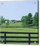 Scenic View Of Horse Farm, Woodford Acrylic Print