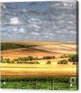 Scenic Wiltshire Acrylic Print