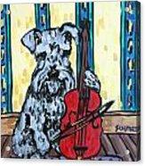 Schnauzer Playing Cello Acrylic Print by Jay  Schmetz