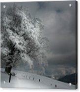 Schneeweg Acrylic Print