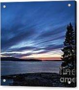Schoodic Peninsula Acadia Acrylic Print by John Greim