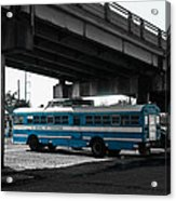 School Of Everything Under A Bridge In New Orleans Acrylic Print by Louis Maistros