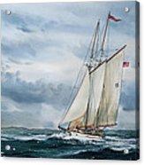 Schooner Adventuress Acrylic Print by James Williamson