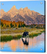 Schwabacher Morning Light  Acrylic Print