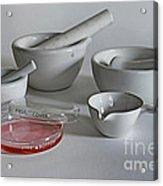 Science Class Acrylic Print