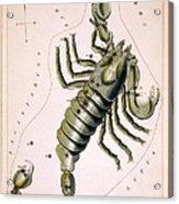 Scorpio Constellation  1825 Acrylic Print
