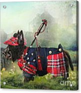Scottie Of The Glen Acrylic Print by Trudi Simmonds