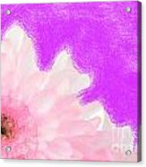 Scream And Shout Pink White Purple Acrylic Print