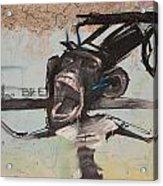 screaming Monkey Acrylic Print