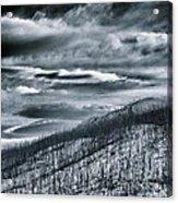 Land Shapes 27 Acrylic Print