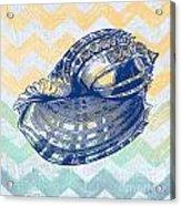 Sea Shell-c Acrylic Print