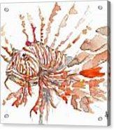 Sea Dude  Acrylic Print