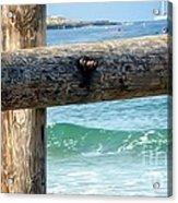 Sea Gate Acrylic Print