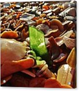 Sea Glass And Shells 16 10/2 Acrylic Print