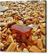 Sea Glass And Shells 3 10/13 Acrylic Print