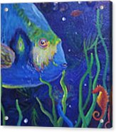 Sea Horse And Blue Fish Acrylic Print