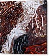 Sea Horse Acrylic Print