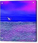 Sea. Last rays of sun Acrylic Print