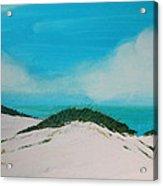 Sea Oat Dune 4 Acrylic Print