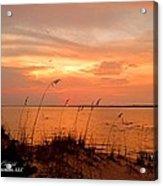 Sea Oats Sunset  Acrylic Print