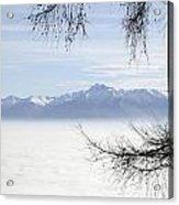 Sea Of Fog And A Tree Acrylic Print