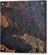 Sea Of Rust Acrylic Print by Fran Riley