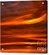 Sea Of Sun Acrylic Print by Alan Look